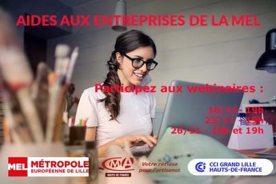 Webinaires de présentation des aides à destination des Artisans - Commerçants et Entrepreneurs du territoire métropolitain